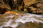 Cascade in the Virgin River Narrows, Zion National Park, Utah