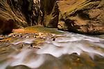 Cascade in the Virgin River Narrows, Zion National Park, Utah