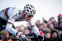 CX World Champion Mathieu van der Poel (NED/Corendon-Circus) attacking the pump track<br /> <br /> Azencross Loenhout 2019 (BEL)<br />  <br /> ©kramon