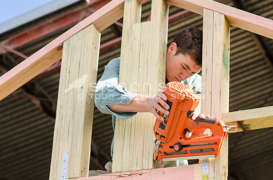Young male carpenter using a nail gun on a wooden house frame inside a shed, Queenstown, New Zealand