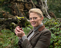 BNPS.co.uk (01202 558833)<br /> Pic: PhilYeomans/BNPS<br /> <br /> Old and the new - Rural manager Rachel Brodie with one of the tiny saplings next to a fallen oak.<br /> <br /> A herd of British white cattle is being returned to help manage ancient woodland on the Blenheim Estate.<br /> <br /> Some 45 cattle, including 21 cows, 23 calves and Sebastian the bull, have been released into High Park, a wooded area of the Oxfordshire estate that was originally created by King Henry I as a deer park in the 12th century. <br /> <br /> It is the first time the woods have been grazed by livestock for more than a century and it is hoped their re-introduction will encourage new tree growth.