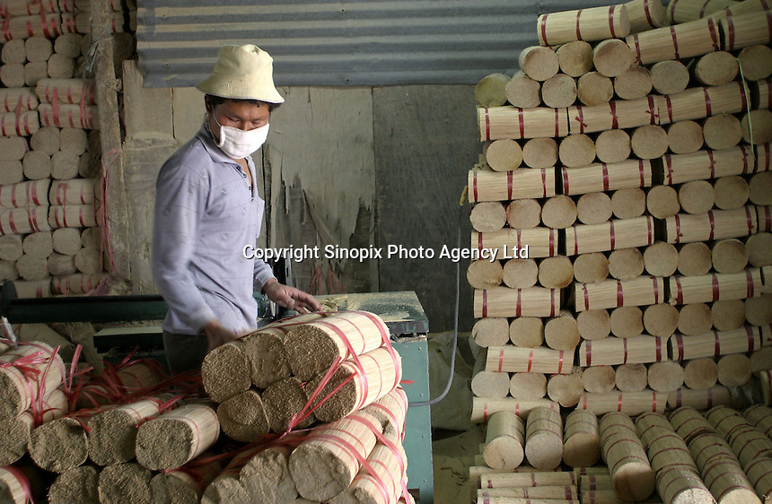 A worker swas things bamboo sticks to size to make incense at the Meizhengxiang Incense Factory near Xiamen, Fujian Province, China. As religous life increasingly becomes an important part of China, businesses related to religion such as Buddhism and Daoism have flourished. The factories have seen its sales quadruple since its establishment in 1996, reaching euro 5 million in 2003. The factory now employs over 200 workers, mostly migrants from Sichuan and Jiangxi Province..17-MAR-04