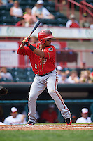 Harrisburg Senators third baseman Adrian Sanchez (8) at bat during a game against the Erie Seawolves on August 30, 2015 at Jerry Uht Park in Erie, Pennsylvania.  Harrisburg defeated Erie 4-3.  (Mike Janes/Four Seam Images)
