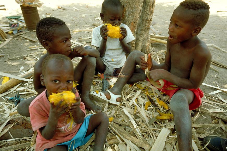 Child eating grilled fruit of Borassus aethiopum