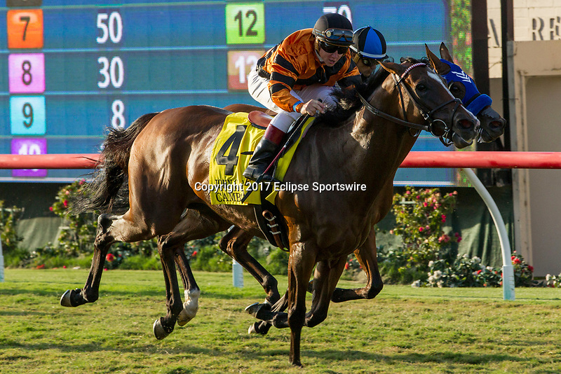 DEL MAR, CA. SEPTEMBER 2:  #4 Cambodia ridden by Drayden Van Dyke, passes #13 Goodyearforroses ridden by Corey Nakatani, in in the stretch of the John C. Mabee Stakes (Grade ll) on September 2, 2017, at Del Mar Thoroughbred Club in Del Mar, CA.(Photo by Casey Phillips/Eclipse Sportswire/Getty )
