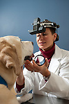 Veterinary ophthalmologist Dr. Katie Diehl performs an eye exam on a dog at Veterinary Specialty and Emergency Care in Madison, Wis., on Dec. 7, 2008. Diehl is a 1992 graduate of Hawken School, a private K-12 school in Ohio.
