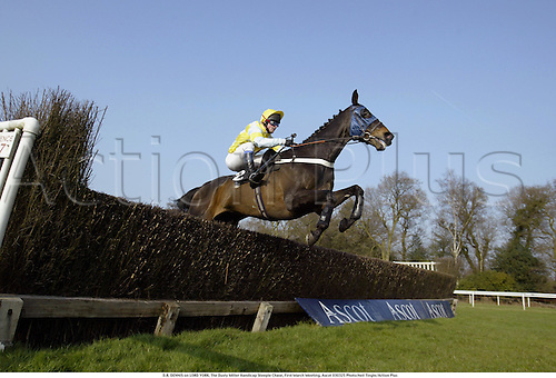 D.R. DENNIS on LORD YORK. The Dusty Miller Handicap Steeple Chase, First March Meeting, Ascot 030325 Photo:Neil Tingle/Action Plus...2003 horse racing steeplechase