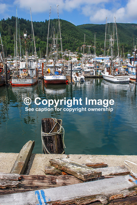 Garibaldi, fishing village, Oregon, USA, 200808310737..Copyright Image from Victor Patterson, 54 Dorchester Park, Belfast, N Ireland, BT9 6RJ...Tel: +44 28 9066 1296.Mob: +44 7802 353836.Email: victorpatterson@mac.com..IMPORTANT - Please visit www.victorpatterson.com and click on Terms & Conditions