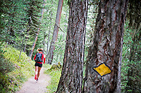 A woman trail runner passes a painted Swiss trail marker on a tree above Zermatt, Switzerland
