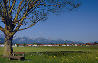 Wooden seat underneath the spreading branches of a chestnut tree, against a village of homes and the snow capped alps.<br /> Forggensee Lake, Schwangau,Bavaria, Germany.