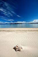 Rock on deserted beach of Bruny Island, Tasmania