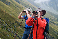 Neustift im Stubaital, Stubaier Hohenweg, Tirol, Austria, September 2008.  Shepherds look for their sheep during the annual 'Almabtrieb', This event marks the end of the summer. Hiking the Stubai High Trail from hut to hut in the southern Alps, we clear a mountain pass on a daily basis. Photo by Frits Meyst/Adventure4ever.com.