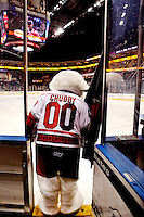The Charlotte Checkers is the professional ice hockey franchise in Charlotte, NC. The team plays in the American Hockey League. Photo taken during the 2011 Calder Cup Playoffs (East Division Final) in May 2011.