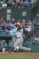 Lynchburg Hillcats infielder Claudio Batista (29) at bat during a game against the Myrtle Beach Pelicans at Ticketreturn Field at Pelicans Ballpark on April 14, 2017 in Myrtle Beach, South Carolina. Lynchburg defeated Myrtle Beach 5-2. (Robert Gurganus/Four Seam Images)