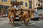 Romeria San Miguel, Tenerife, Canary Islands, Spain