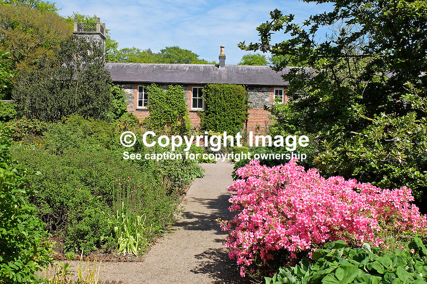 National Trust, Rowallane, Saintfield, N Ireland, UK, walled garden, May, 2015, 201505231080<br /> <br /> Copyright Image from Victor Patterson, 54 Dorchester Park, Belfast, UK, BT9 6RJ<br /> <br /> t: +44 28 9066 1296<br /> m: +44 7802 353836<br /> vm +44 20 8816 7153<br /> <br /> e1: victorpatterson@me.com<br /> e2: victorpatterson@gmail.com<br /> <br /> www.victorpatterson.com<br /> <br /> IMPORTANT: Please see my Terms and Conditions of Use at www.victorpatterson.com
