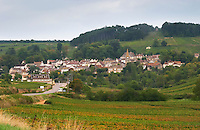 Vineyard. Pernand Vergelesses. Aloxe village. Aloxe Corton. Burgundy, France