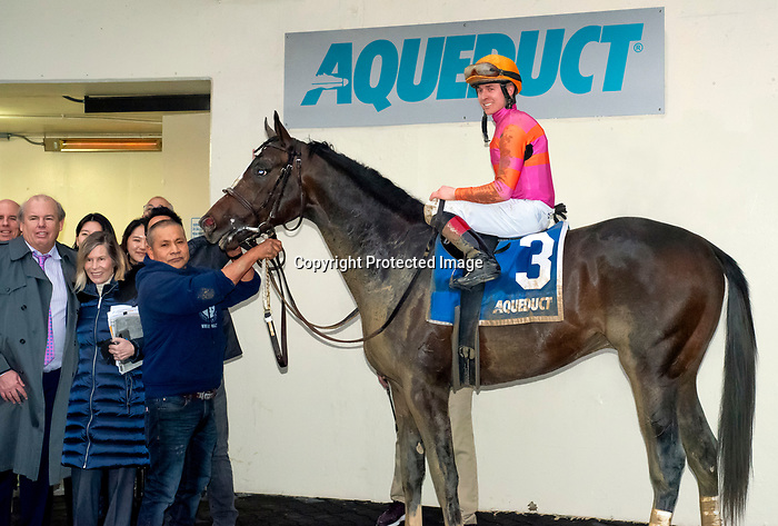 """February 1st, 2020: Max Player [3] in the winners circle with Dylan Davis after winning the G3 Withers Stakes. """"Player"""" earned 10 points toward the KY Derby and is trained by Linda Rice. The race was held at Aqueduct Race Track in Ozone New York. Heary/Eclipse Sportswire/CSM"""