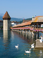 Switzerland, Canton Lucerne: Chapel Bridge and Water Tower - girl feeding swans