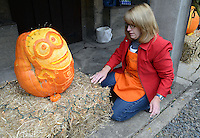 DOYLESTOWN, PA -  OCTOBER 19:  Peg Prizer of Doylestown, Pennsylvania puts the finishing touches on her Minion pumpkin during Pumpkinfest at the Moravian Tile Works October 19, 2013 in Doylestown, Pennsylvania. (Photo by William Thomas Cain/Cain Images)