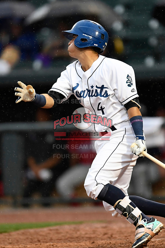 Jose Gomez (4) of the Asheville Tourists with the South team bats during the South Atlantic League All-Star Game on Tuesday, June 20, 2017, at Spirit Communications Park in Columbia, South Carolina. The game was suspended due to rain after seven innings tied, 3-3. (Tom Priddy/Four Seam Images)