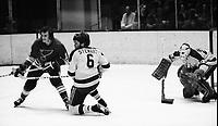 California Golden Seals vs St.Louis Blues 1972.<br />Brian Lavendar and Seals Bob Stewart, goalie Gilles Meloche. (photo by Ron Riesterer)