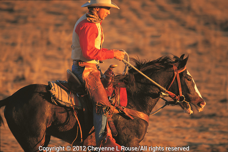 Handsome cowboy riding his mustang into the sunset in Arizona (Model release on file)