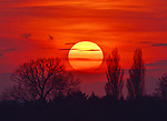 Sunset in Wiltshire by Sonia Hill