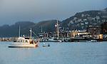 Sausalito and Tiburon, CA.  Marinas by Frank Balthis