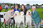 DOG SHOW: Having a great time at the Munster Circuit Dog Show at Killarney Cathedral on Tuesday l-r:Mary Foley, Fossa, Yvonne Baverstock, England, Grace Foley, Fossa and Keith Savage, England.