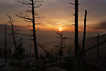 Sunset At Clingman's Dome, Great Smoky Mountains National Park,