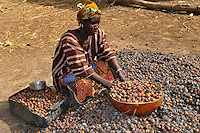 Women processing shea nuts in to shea butter
