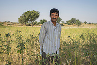 Sahiram Godara, 28, poses for a portrait in his guar Demo Plot in Kheeyara village, Bikaner, Rajasthan, India on October 24th, 2016. Non-profit organisation Technoserve works with farmers in Bikaner, providing technical support and training, causing increased yield from implementation of good agricultural practices as well as a switch to using better grains better suited to the given climate. Photograph by Suzanne Lee for Technoserve
