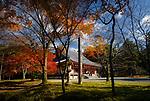 Kondo, central hall of Shimo-Daigo part of Daigoji complex in colorful autumn nature scenery. Daigo-ji, Shingon Buddhist temple in Fushimi-ku, Kyoto, Japan 2017