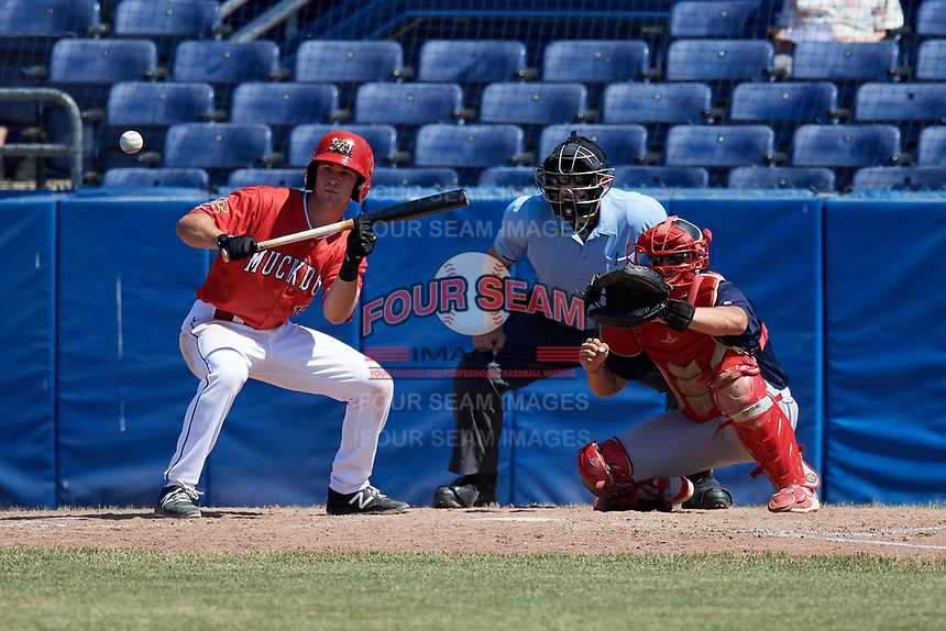Batavia Muckdogs left fielder Matt Brooks (15) lays down a bunt in front of catcher Joe Gomez (25) and umpire Jordan Sandberg during a game against the State College Spikes on July 8, 2018 at Dwyer Stadium in Batavia, New York.  Batavia defeated State College 8-3.  (Mike Janes/Four Seam Images)