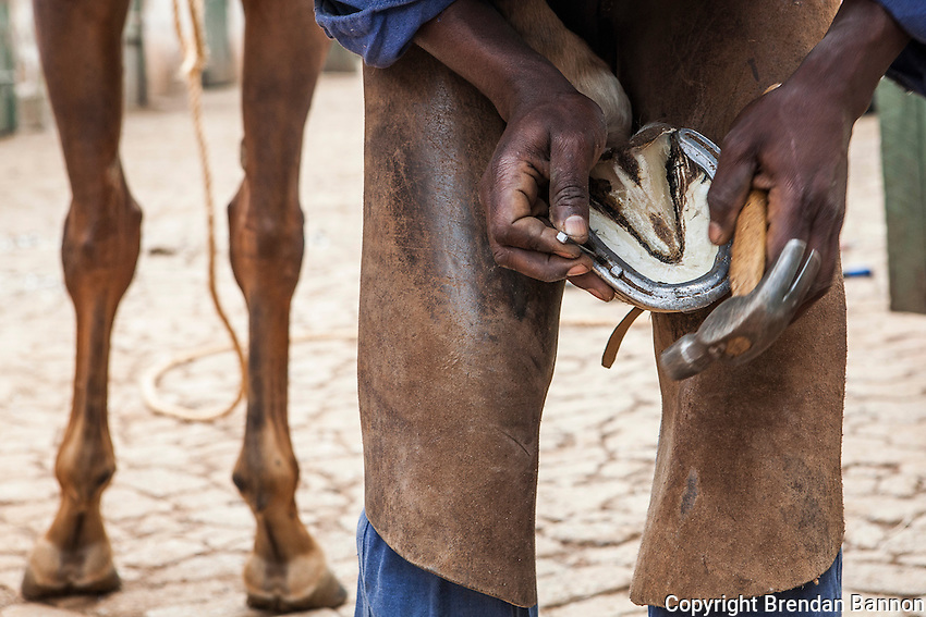 Farrier George Njuguna shoes a horse at Ngong Racecourse. Njuguna has worked for various trainers  at Ngong Racecourse since 1999 when he began as a syce with trainer Julie McCann. He now works freelance at Ngong Racecourse. Nairobi, Kenya. March 22, 2013. Photo: Brendan Bannon