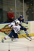 March 13, 2009:  Michael Duco (14) of the Rochester Amerks and Andrew Martens (15) of the Toronto Marlies in the first period during a game at the Blue Cross Arena in Rochester, NY.  Toronto defeated Rochester 4-2.  Photo copyright Mike Janes Photography 2009