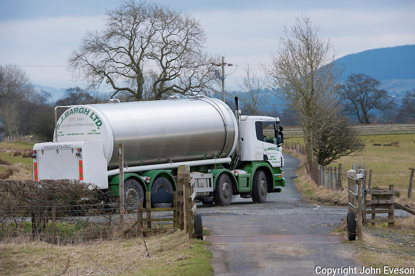 S. J. Bargh milk tanker collecting and transorting milk, Whitewell, Lancashire.