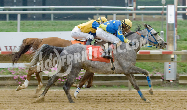 Butch Cassidy LZP winning at Delaware Park on 10/25/12