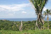 A view of the Caribbean Sea from a hill top on Roatan Island, Honduras