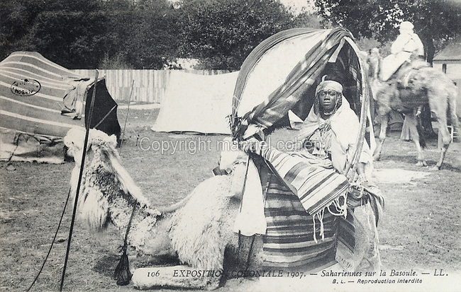Saharan African woman from the Ouled Nail tribe on a Mehari dromedary at the Colonial Exhibition of 1907, held in the Jardin d'Agronomie Tropicale, or Garden of Tropical Agronomy, in the Bois de Vincennes in the 12th arrondissement of Paris, postcard from the nearby Musee de Nogent sur Marne, France. The garden was first established in 1899 to conduct agronomical experiments on plants of French colonies. In 1907 it was the site of the Colonial Exhibition and many pavilions were built or relocated here. The garden has since become neglected and many structures overgrown, damaged or destroyed, with most of the tropical vegetation disappeared. The site is listed as a historic monument. Picture by Manuel Cohen / Musee de Nogent sur Marne