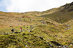 People walking on path to Helvellyn,  near Glenridding, Lake District, Cumbria, England, UK