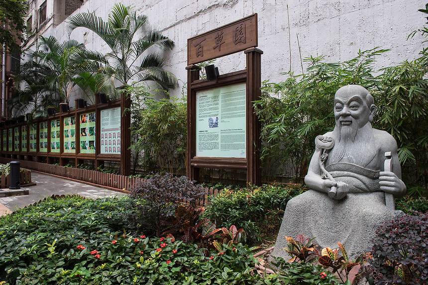 """HONG KONG SAR: CHINA - March 07 ,2018: Statue of Shennong in the Queen Street Rest Garden Bonham Street Sheung Wan.The garden has over 100 plants used in Chinese medicine on display with explanation of their uses. Shennong, translated as """"God farmer"""", is credited as the Father of Chinese medicine."""