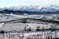 - panorama  of Langhe hills and the Alps from Monforte D' Alba....- panorama colline delle Langhe e Alpi da Monforte D'Alba