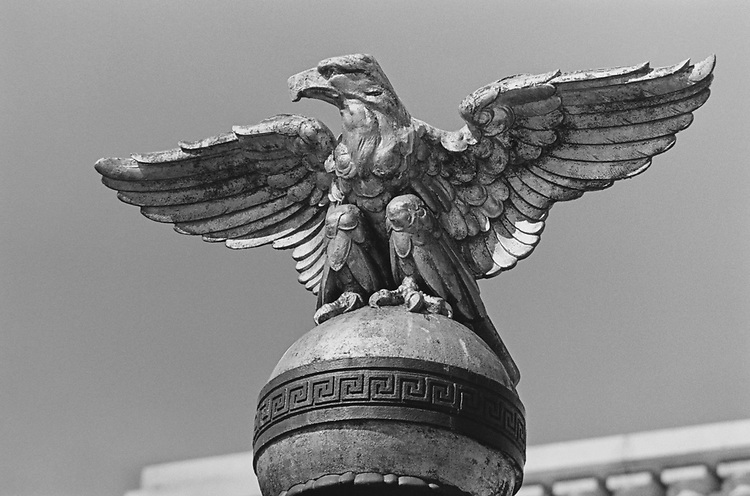 Bald Eagle on the top of light post at Washington Union Station in April 1997. (Photo by Rebecca Roth/CQ Roll Call via Getty Images)