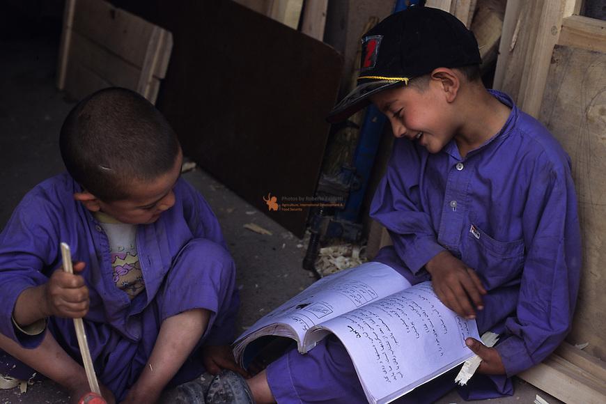 Schoolboys reading Schoolbooks