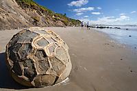 Tourists walk around the Moeraki Boulders, rock formations,  Coastal Otago