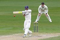 Cricket 2013-05