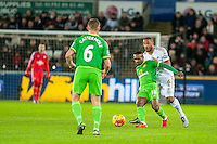 Jermain Defoe of Sunderland  tries to get the better of Ashley Williams of Swansea during the Barclays Premier League match between Swansea City and Sunderland played at the Liberty Stadium, Swansea  on  January the 13th 2016