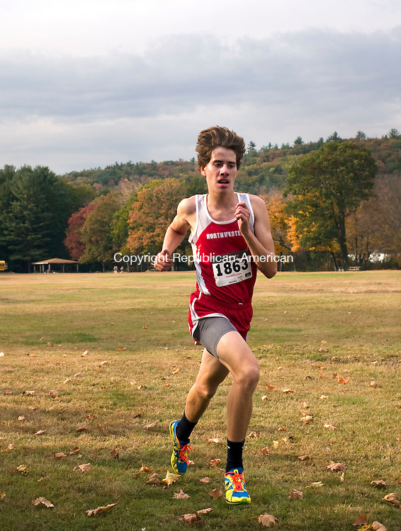 Watertown, CT- 22 October 2015-102215CM01- Action man---  Northwestern's Peter Bakker  races to the finish line during the Berkshire League XC championships at Black Rock State Park  on Thursday.  Bakker was the boys first place finisher.     Christopher Massa Republican-American